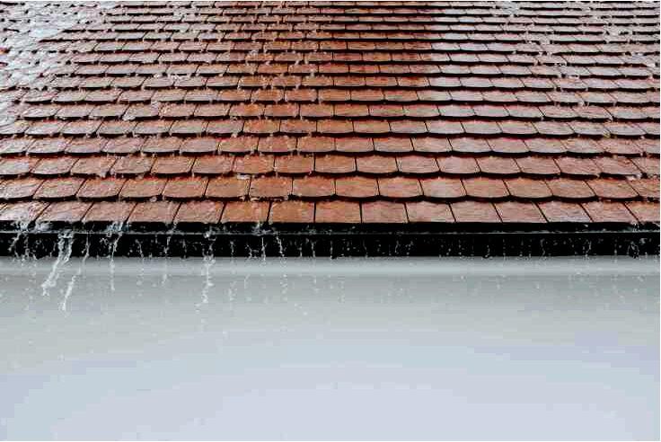 Что делать, чтобы на крыше не появлялся мох?