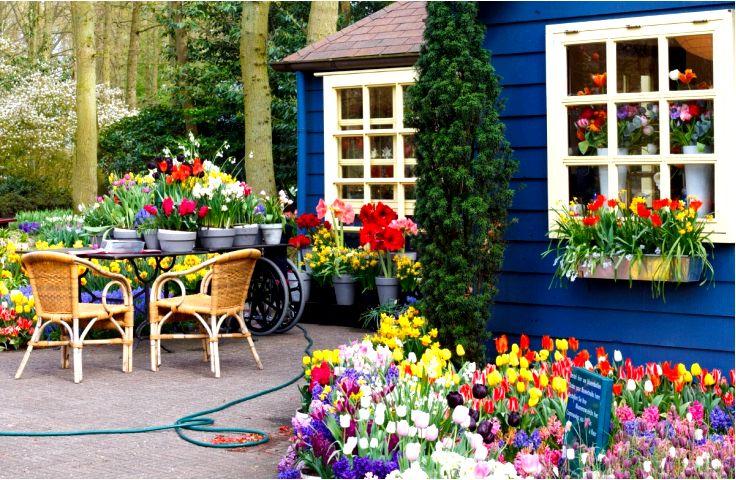 Дома в голландском стиле - что отличает проекты домов, вдохновленные голландской архитектурой?