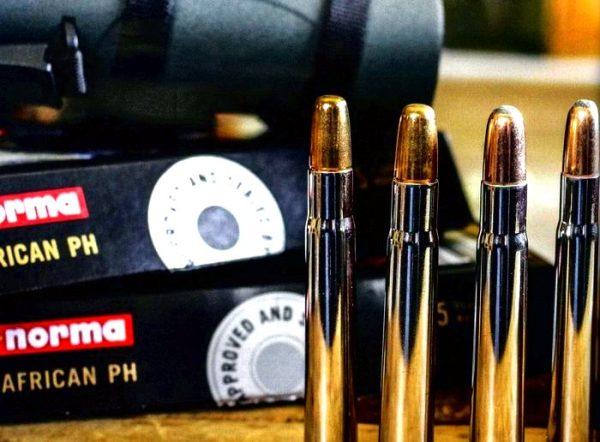 Как выбрать правильный винтовочный патрон?
